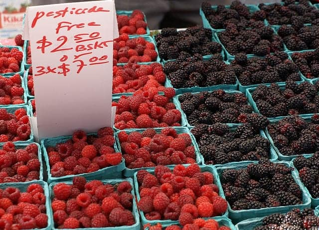 pesticide free berries.Anna Majkowska flickr